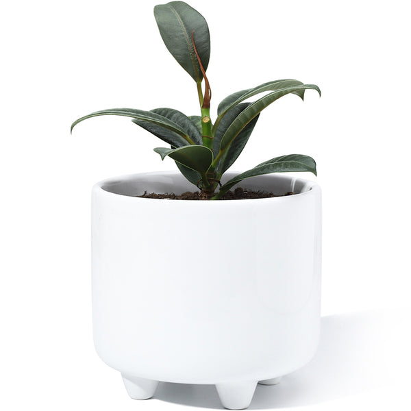 5.3 Inch White Glazed Ceramic Pot