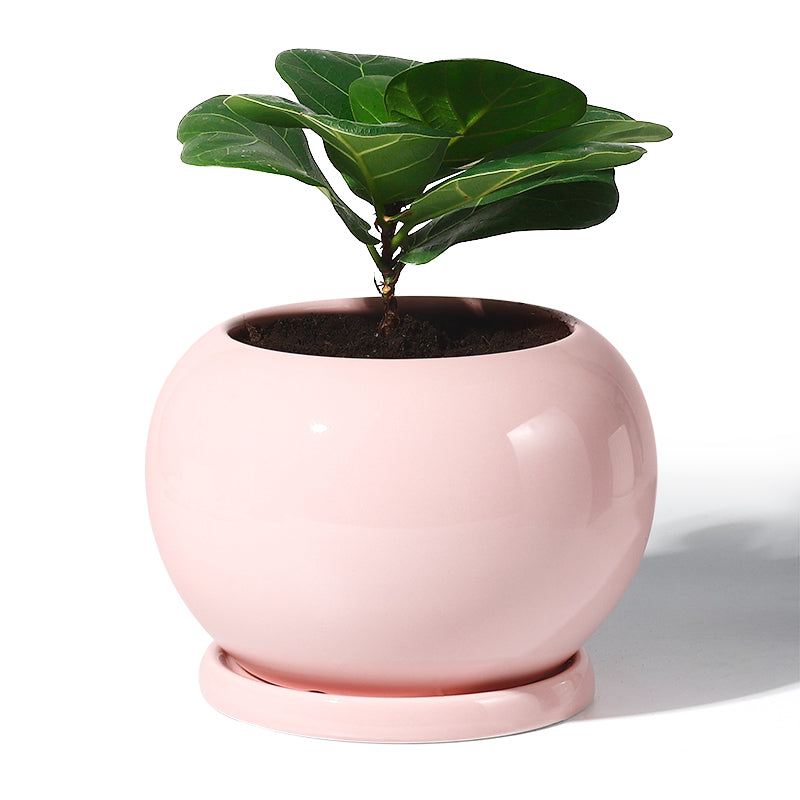 5 inch Round Planter with Saucer, Pink