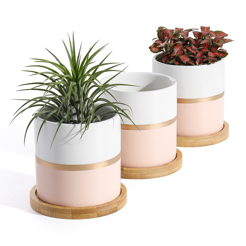 Ceramic Small Plant Pot wih Saucer, White and Pink