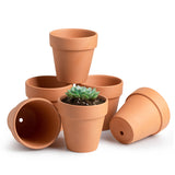 Small Terracotta Pots, Set of 6