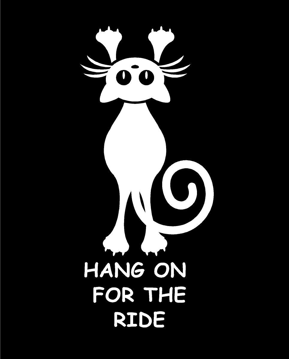 hang on for the ride cat decal hang in there decal car truck window sticker