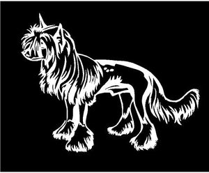 chinese crested dog decal car truck window sticker