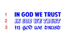 Load image into Gallery viewer, in god we trust sticker
