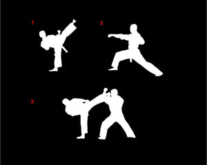 karate silhouette decal martial arts car truck window sticker
