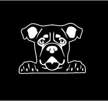 Load image into Gallery viewer, peeking boxer dog decal car truck window dog sticker