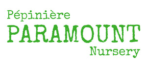 Paramount Nursery Inc.