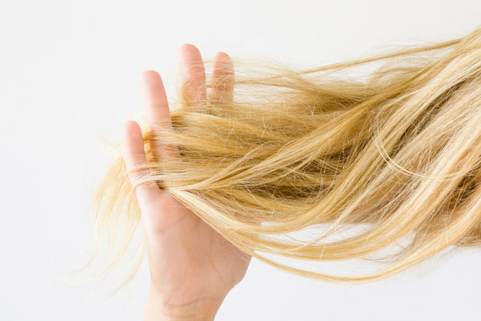 Stop Frizz in its Tracks - How to Give Your Hair the Moisture it Needs