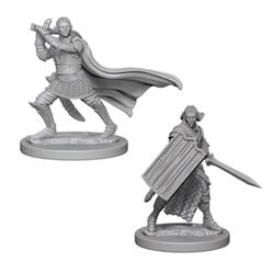 PATHFINDER: DEEP CUTS UNPAINTED MINIATURES -W2-MALE ELF PALADIN