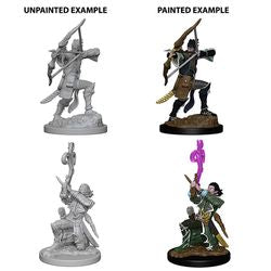 DUNGEONS AND DRAGONS: NOLZUR'S MARVELOUS UNPAINTED MINIATURES -W4-MALE ELF BARD