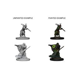 DUNGEONS AND DRAGONS: NOLZUR'S MARVELOUS UNPAINTED MINIATURES -W4-MALE ELF DRUID
