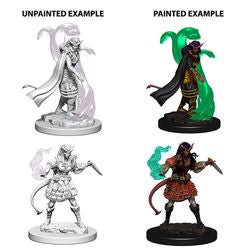DUNGEONS AND DRAGONS: NOLZUR'S MARVELOUS UNPAINTED MINIATURES -W4-FEMALE TIEFLING SORCERER