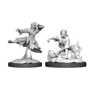 DUNGEONS AND DRAGONS: NOLZUR'S MARVELOUS UNPAINTED MINIATURES -W11-FEMALE HUMAN MONK