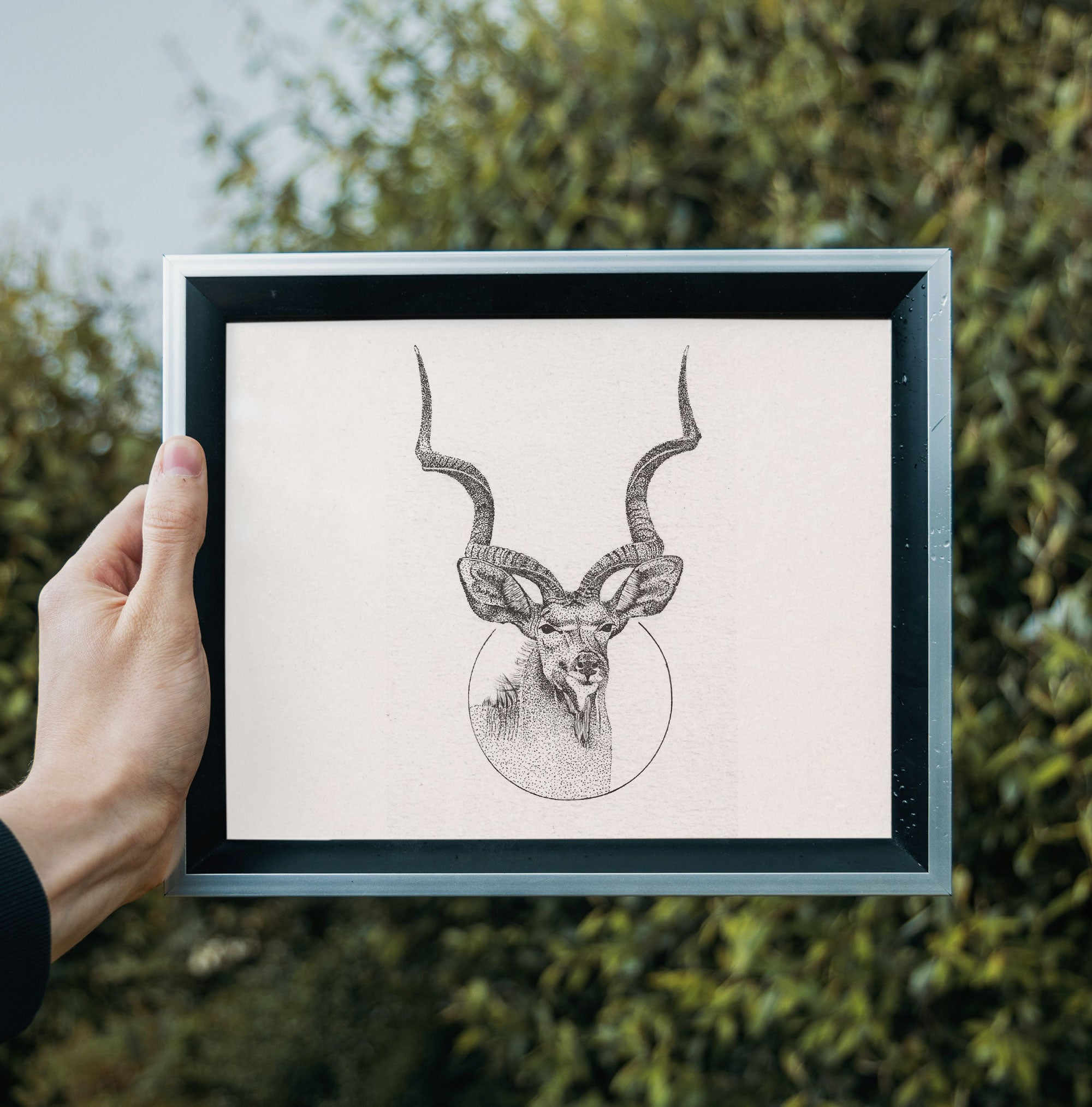 Kudu Bull • Hand Drawn Print - Stokedthebrand. Lifestyle products for outdoor adventures. Made in South Africa