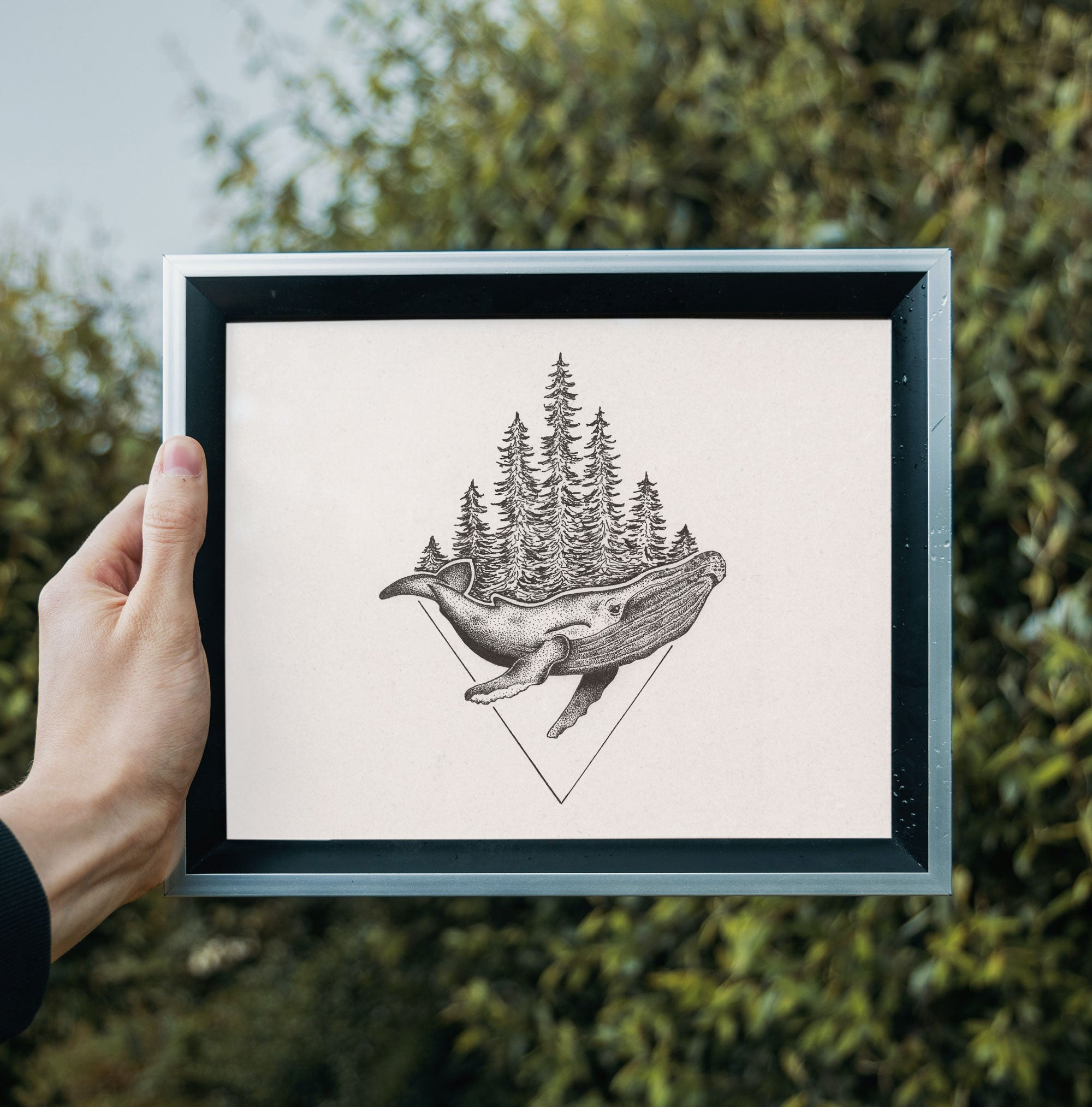 Humpback Whale • Hand Drawn Print - Stokedthebrand. Lifestyle products for outdoor adventures. Made in South Africa