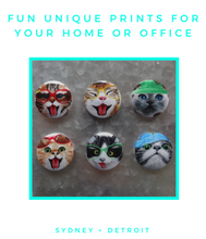 Funny Cats Magnets Set of 6