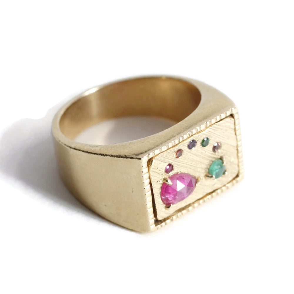 Collage Signet Ring (Large) -Rainbow -Size 6