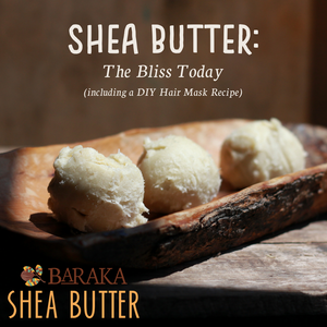 Shea Butter - The Bliss Today