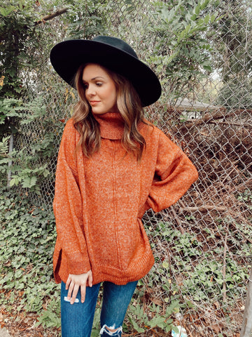 Long Sleeve Turtle Neck Knit Sweater | One Size