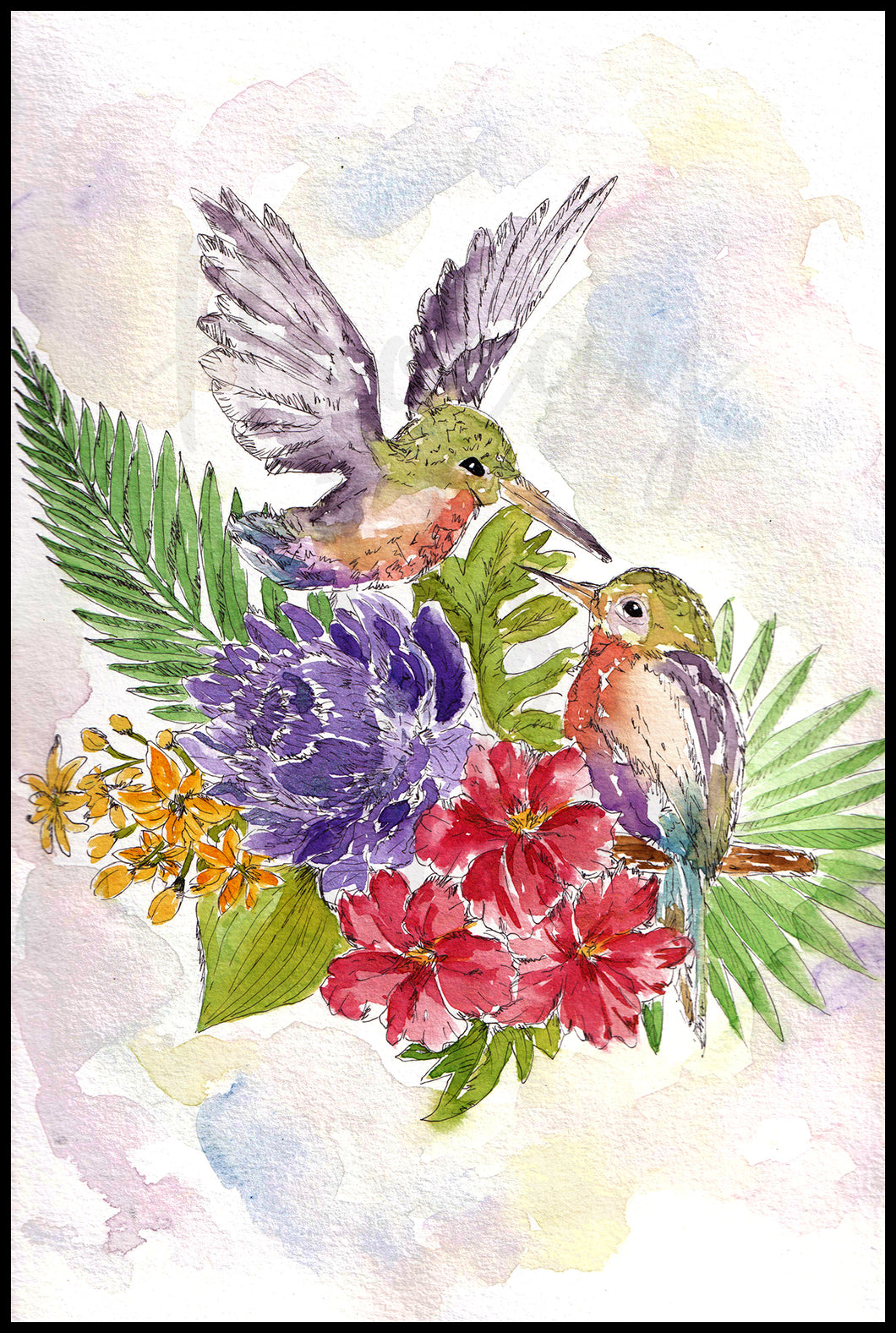Hummingbird Duo