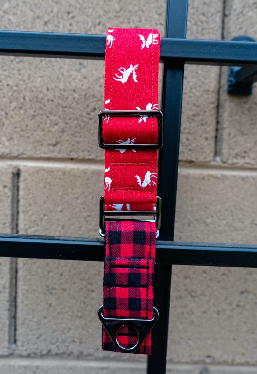 Eve Dog Collar