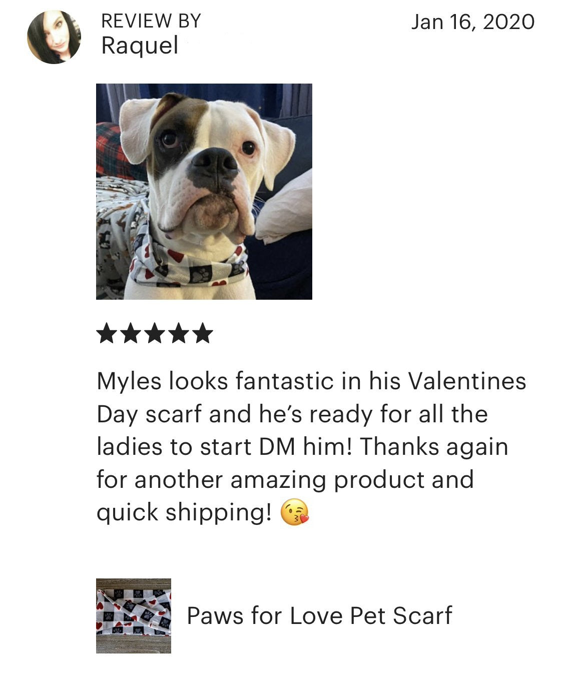 Paws for Love Pet Scarf