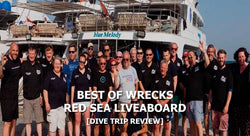 Best of Wrecks Dive Trip Review