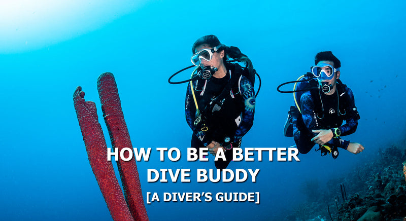 How To Be A Better Dive Buddy | Tips & Tricks | Scuba Leeds UK