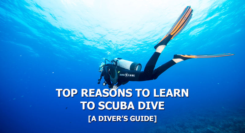 Top Reasons To Learn To Scuba Dive | Scuba Leeds UK