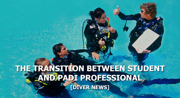 The Transition Between Diver and PADI Professional