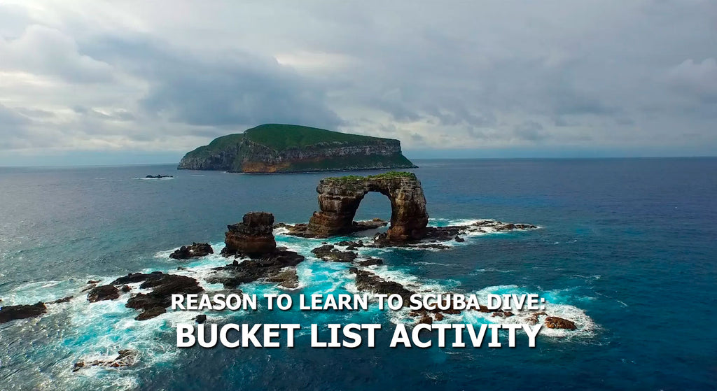 Reasons To Learn To Scuba Dive - Bucket List Activity