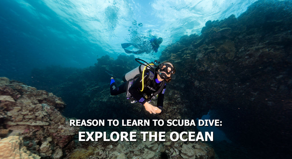 Reasons To Learn To Scuba Dive - Explore The Ocean