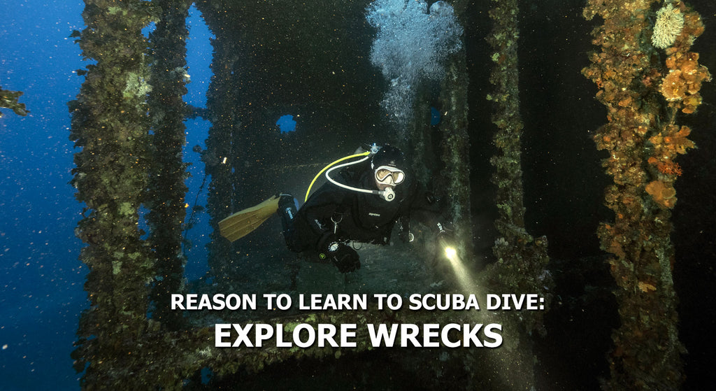 Reasons To Learn To Scuba Dive - Explore Wrecks