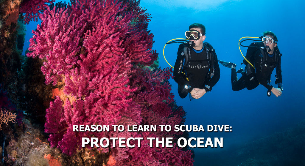 Reasons To Learn To Scuba Dive - Protect The Ocean