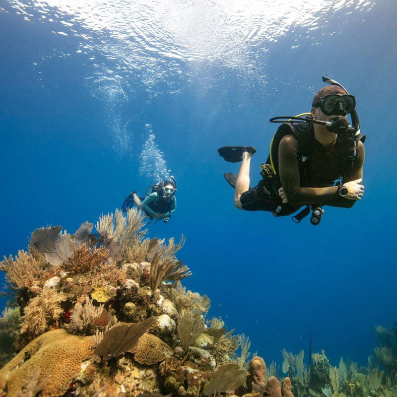 PADI Open Water Diver course by the reef | Scuba Leeds UK