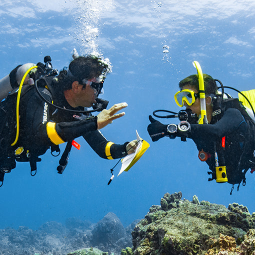 PADI Dive Theory eLearning