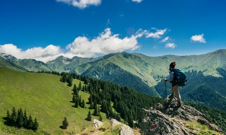 Try out your New Walking Stick on these Terrific Hikes