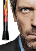 Flame Canes and Dr. Gregory House Replica Walking Canes