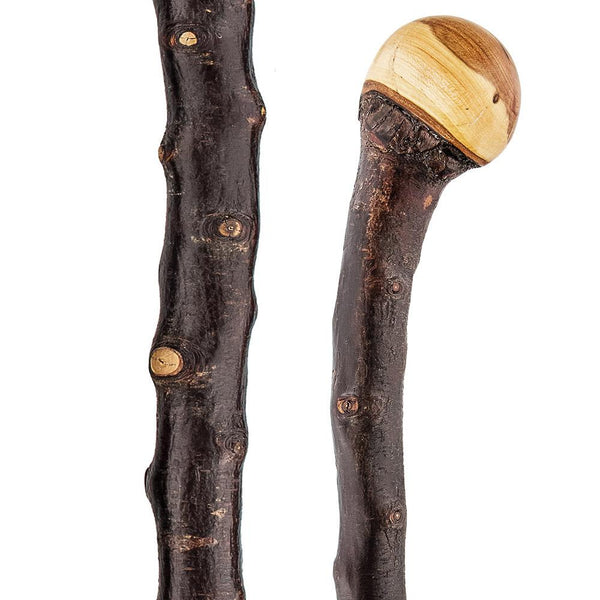 Classic Canes Extra Long Root Knobbed Walking Stick With Blackthorn Shaft