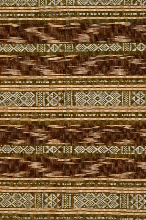 Olive Branch Cotton Ikat 31 Fabric