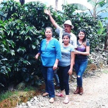 Load image into Gallery viewer, Costa Rica Tarrazu Familia Monge Micro Lot  - Natural