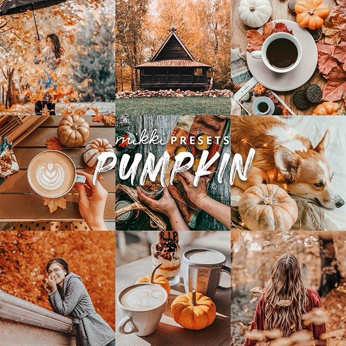 PUMPKIN // 6 MOBILE & 6 DESKTOP PRESETS Preset Collection The Globe Wanderer Presets