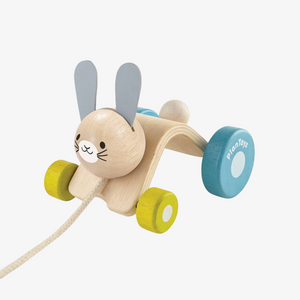Wooden Hopping Rabbit Pull Toy