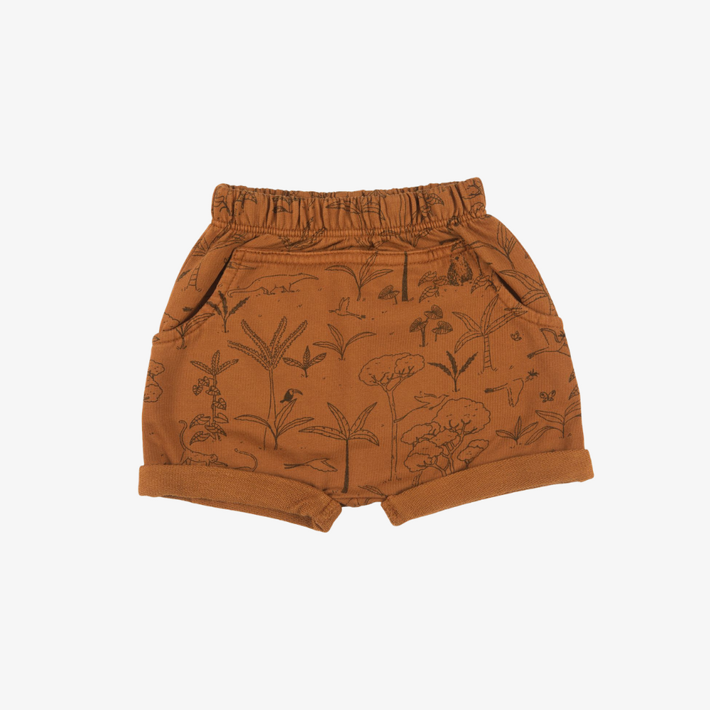 The Story Organic Pima Shorts in Glazed Ginger