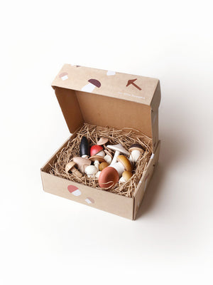 Forest Mushrooms in a Box