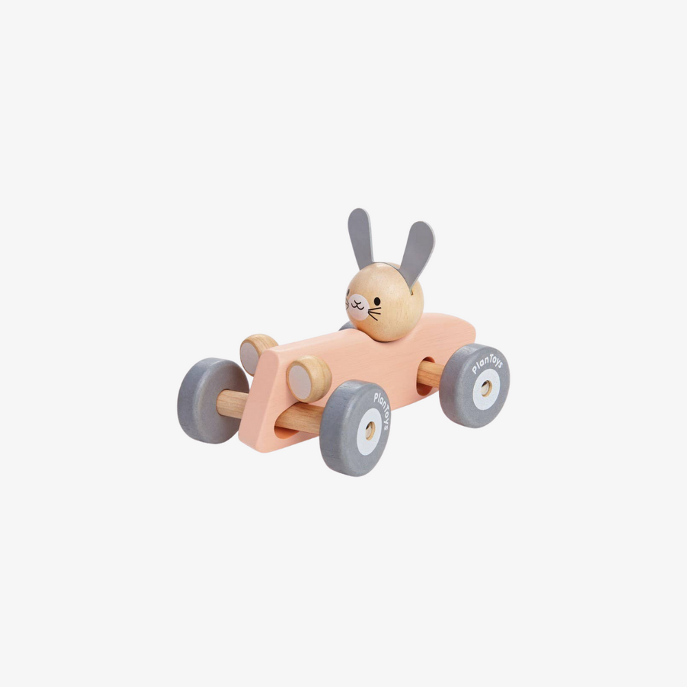 Wooden Bunny Racing Car