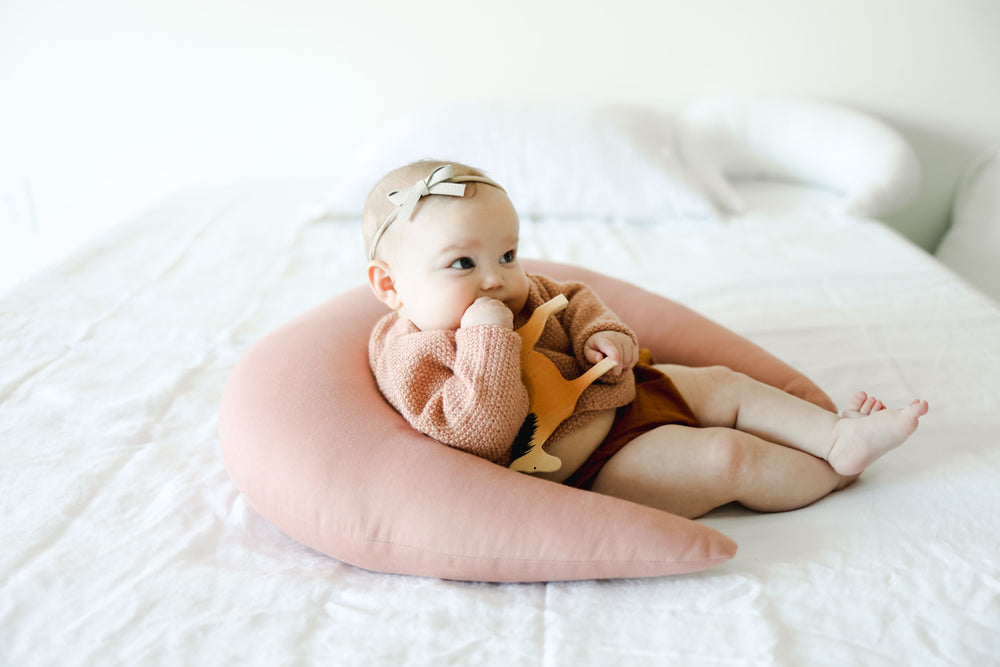 Snuggle Me Feeding Pillow (In Store Purchase Only)