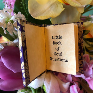 Little Book of Soul Questions
