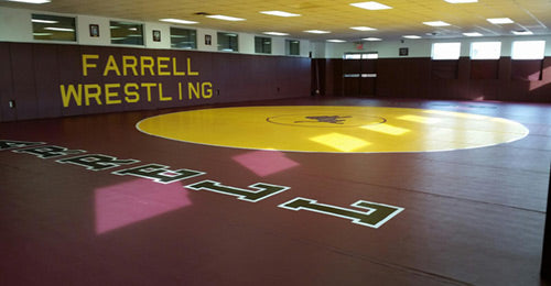Wrestling Mats by Dollamur