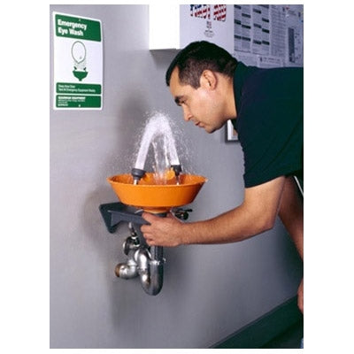 Guardian G1814P Wall Mounted Emergency Eyewash Station, Plastic Bowl