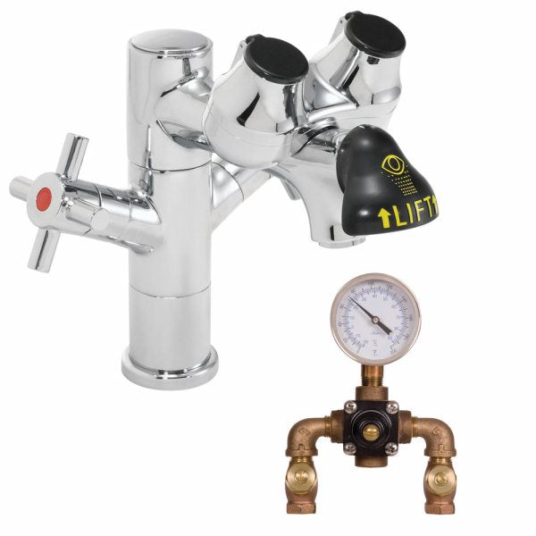 Speakman SEF-1850-TW Eyesaver Eye Wash Faucet Combination Single Post Laboratory Faucet with Thermostatic Mixing Valve